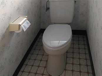 娘さんと好みがピッタリ合った壁紙で、トイレがより良い空間となられたようです。ずっと気になっていましたが、明るくなって満足しています。