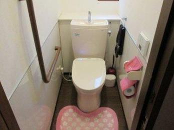 トイレ内装にパネルがおすすめです。掃除がしやすくいつまでもきれいです。床に張っても喜ばれます。